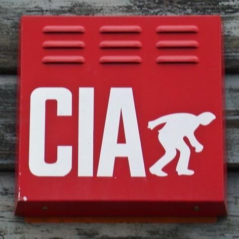 CIA burglar alarm, Emsworth, 2003