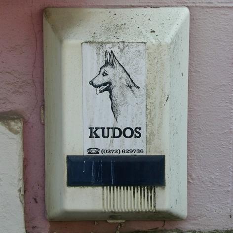 """""""Kudos"""" burglar alarm, Bath, 2008"""