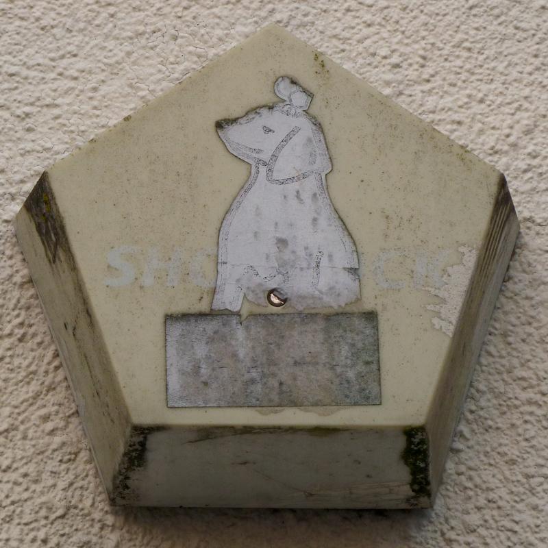 NoName (DogSticker)  RichmondHill Bristol nr BS8 3AU 30441_800