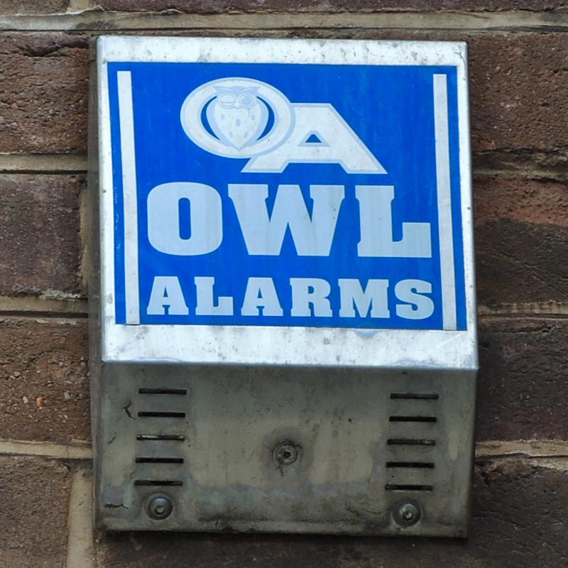 Owl SouthSt Exeter DSCN4060_800
