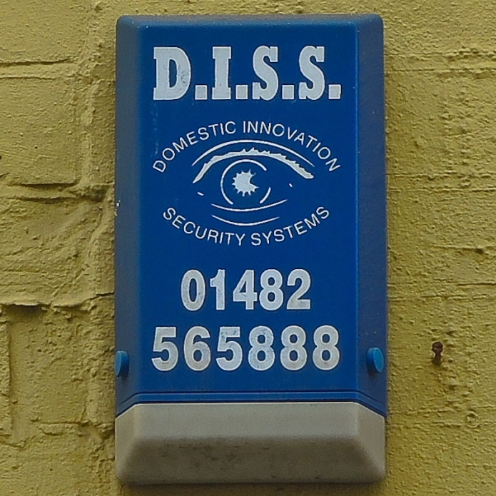 D.I.S.S. Domestic Innovation Security Systems