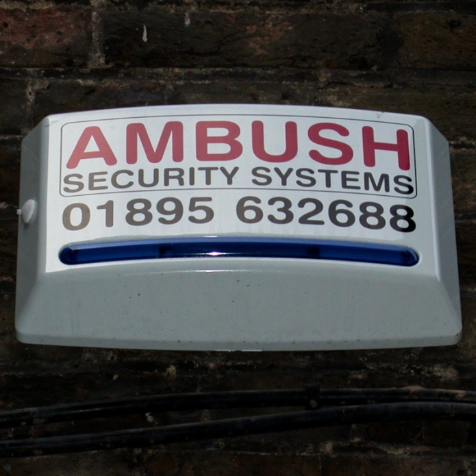 Ambush Security Systems