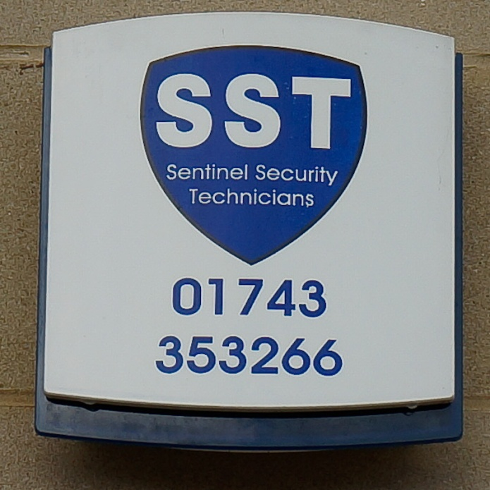 Sentinel Security Technicians