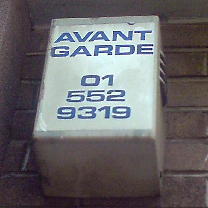 Avant Garde by Sarah Hoyle DSC02298 800px